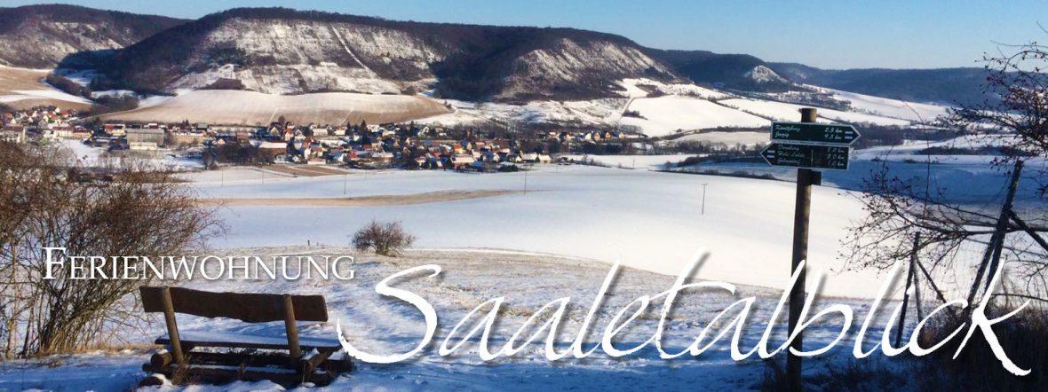 Ferienwohnung Saaletalblick